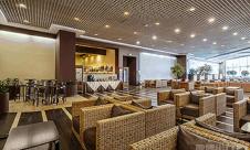 莫斯科多莫杰多沃國際機場Airport Business Lounge